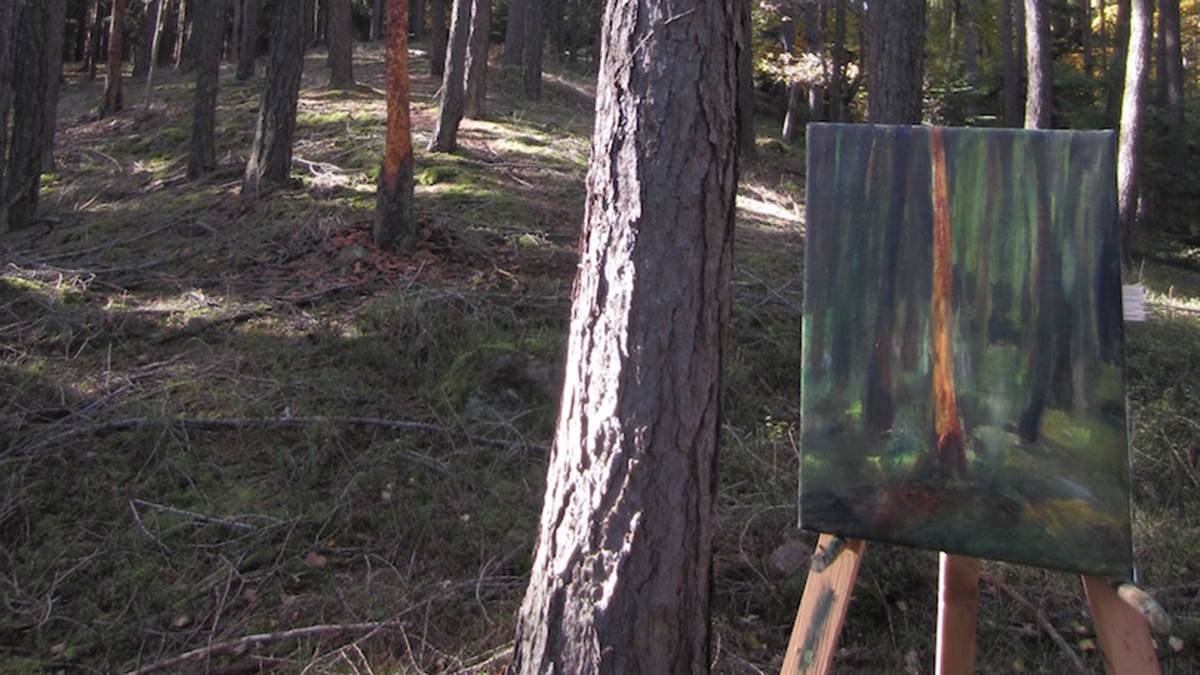 Petr Horacek paints in the woods