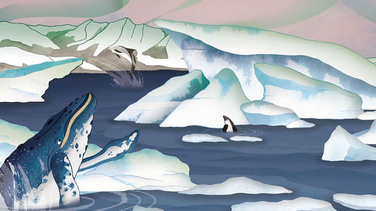 Lucy Letherland's illustration of a whale from Atlas of Adventures: Wonders of the World by Ben Handicott