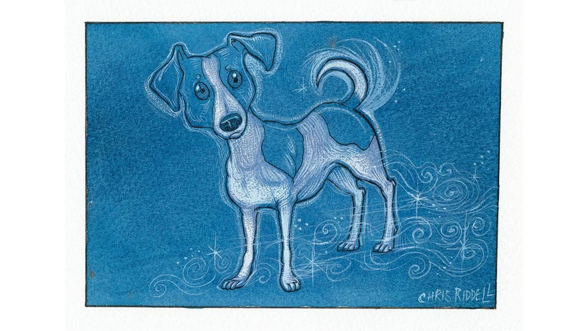 Chris Riddell's Patronus on a Postcard - a Jack Russell