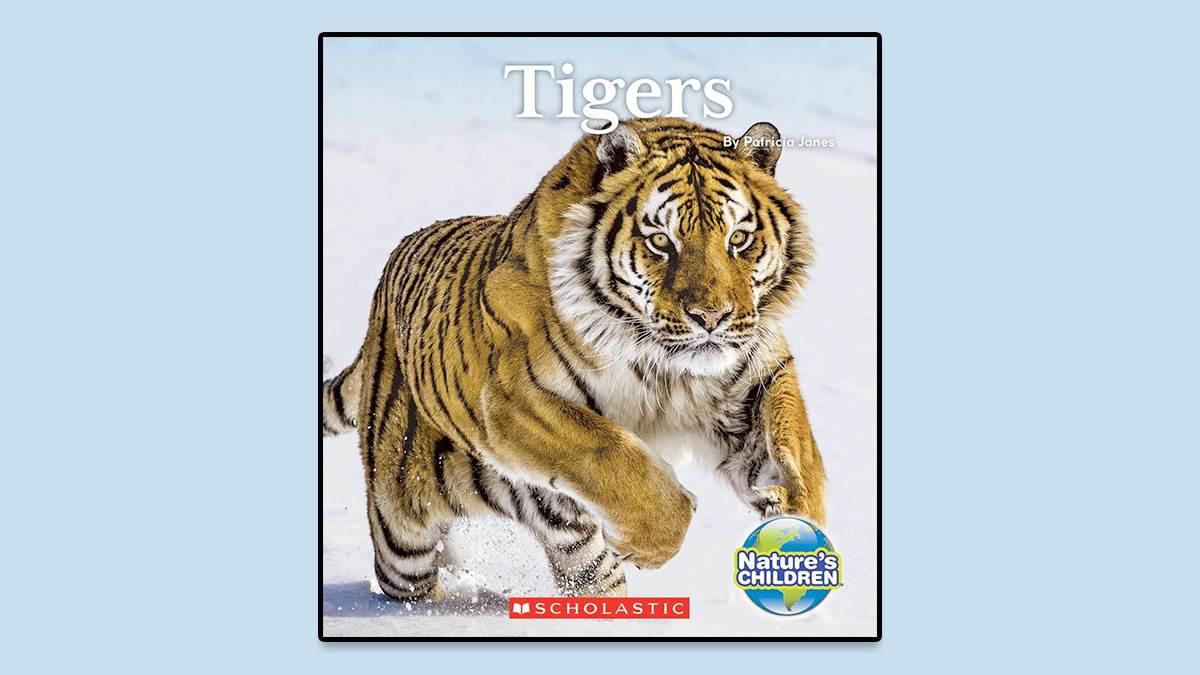 The front cover of Tigers