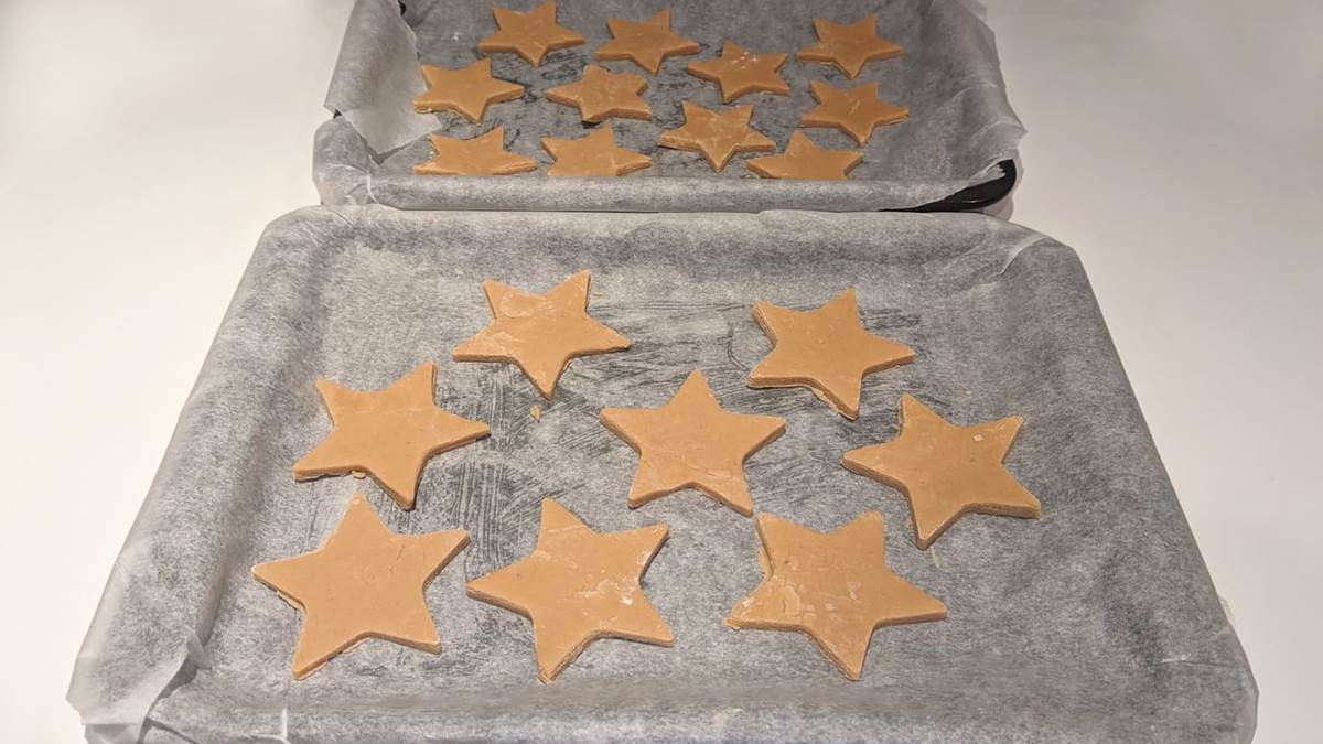 My Pet Star and cookies on baking tray