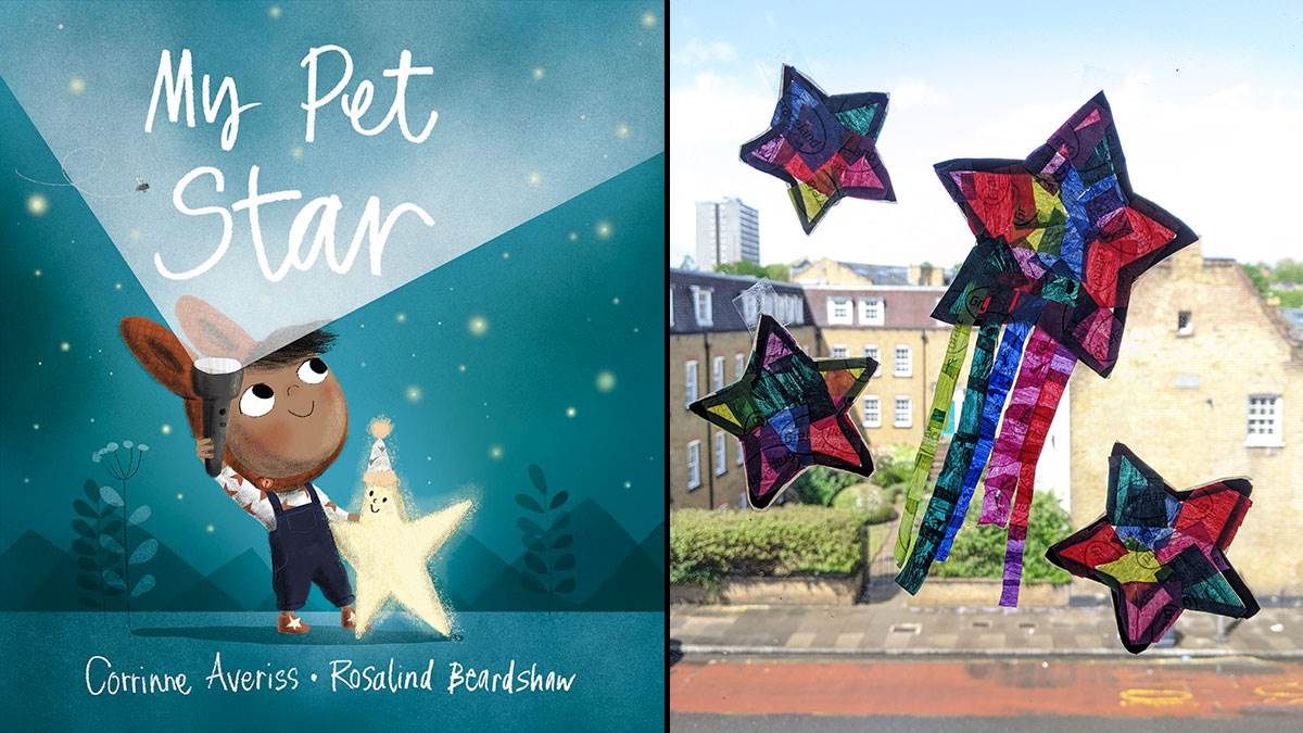 The front cover of My Pet Star and a suncatcher